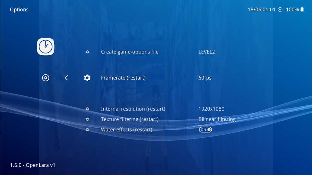 To access these settings, while the game is running, go to the RetroArch menu, and select 'Quick Menu -> Options'.